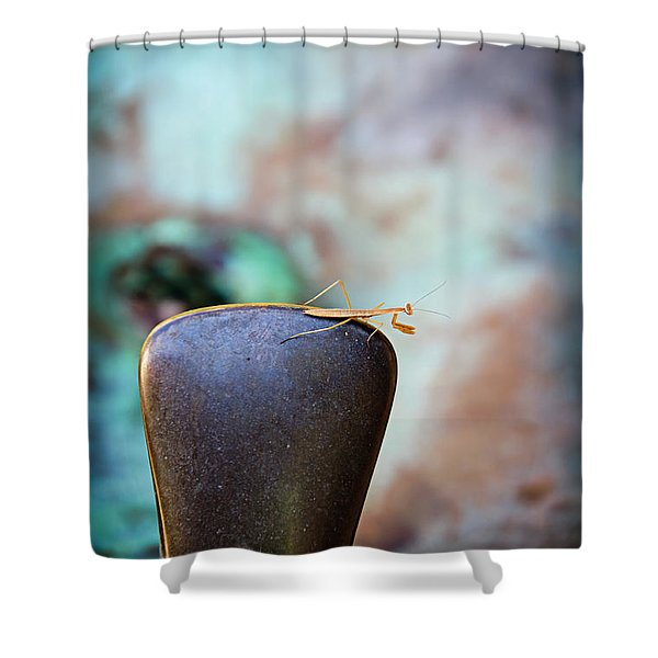 Praying For Water 1 Shower Curtain by Andee Design