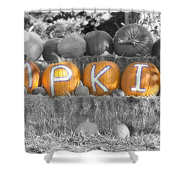 Pumpkins P U M P K I N S Bwsc Shower Curtain by James BO  Insogna