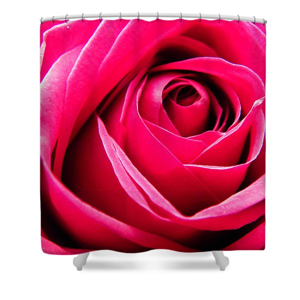 Red Rose Macro Shower Curtain by Sandi OReilly