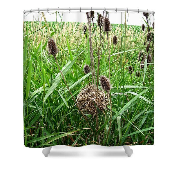 Red-winged Blackbird Nest Shower Curtain by J McCombie