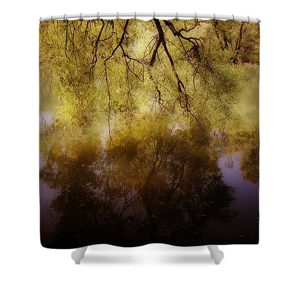 reflection Shower Curtain by Joana Kruse
