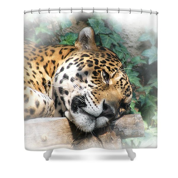 Relaxing 2 Shower Curtain by Ernie Echols