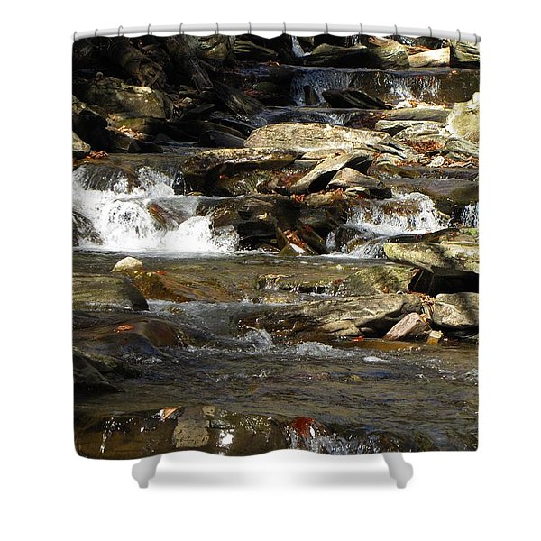 Ricketts Glen Waterfall 3975 Shower Curtain by David Dehner