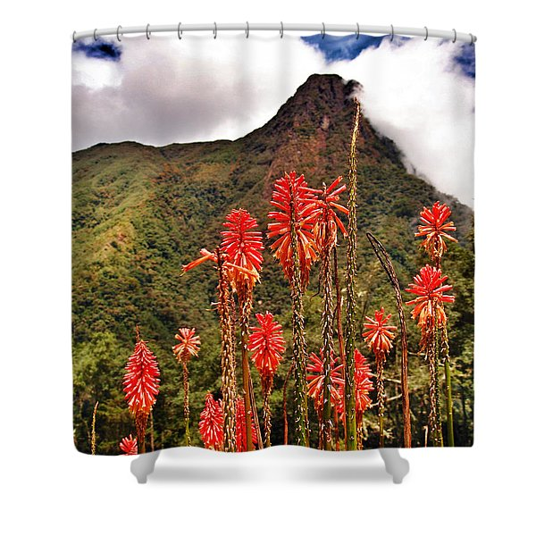 Rocket's Red Glare Shower Curtain by Skip Hunt