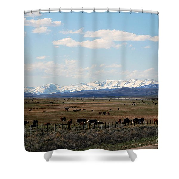 Rural Wyoming - On The Way To Jackson Hole Shower Curtain by Susanne Van Hulst