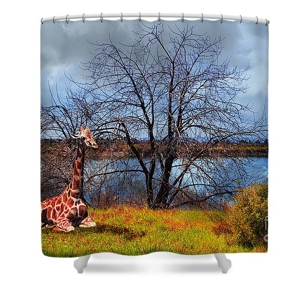 Sanctuary . 7D12636 Shower Curtain by Wingsdomain Art and Photography