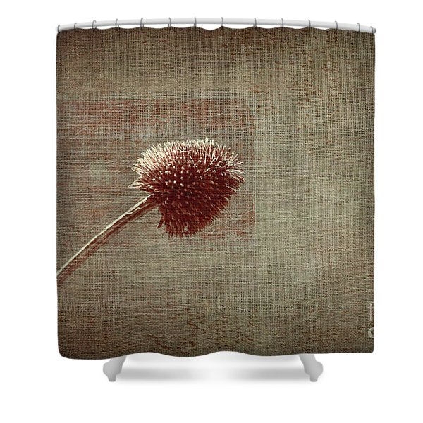 Sans Nom - s03p11t05 Shower Curtain by Variance Collections