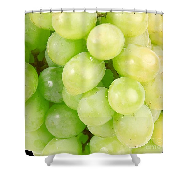 Seedless Shower Curtain by Cheryl Young