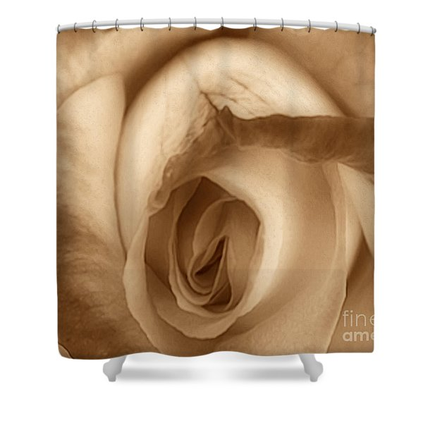 Sepia Petals Shower Curtain by Cheryl Young