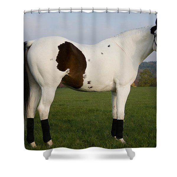 side view Shower Curtain by Ralf Kaiser