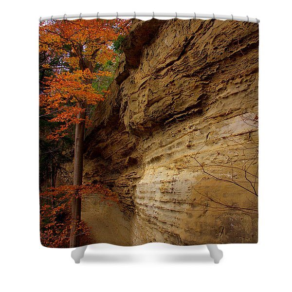 Side Winder Shower Curtain by Ed Smith