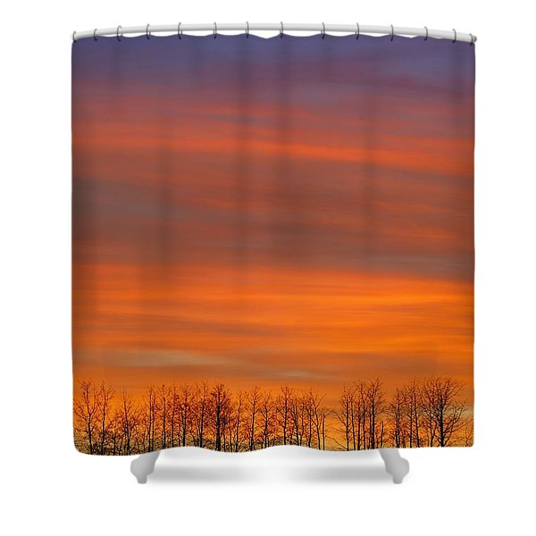 Silhouette Of Trees Against Sunset Shower Curtain by Don Hammond