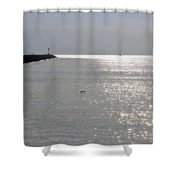 Silver Shower Curtain by Heidi Smith