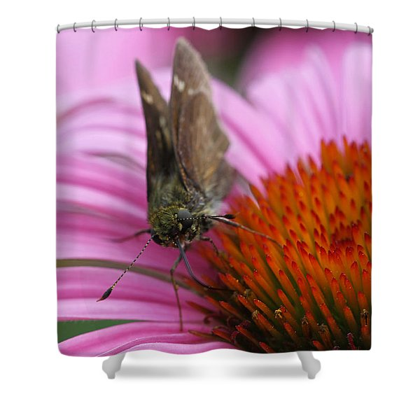 Skipper Butterfly Shower Curtain by Juergen Roth