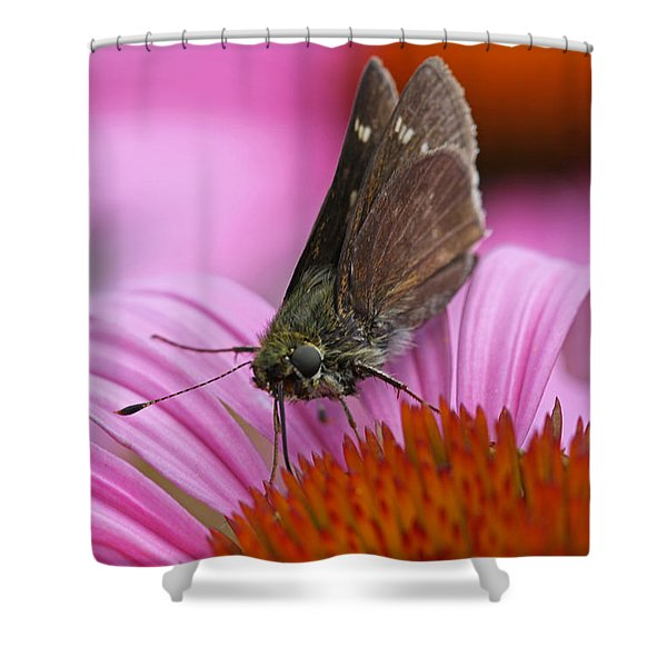 Skipper Moth Macro Photography Shower Curtain by Juergen Roth