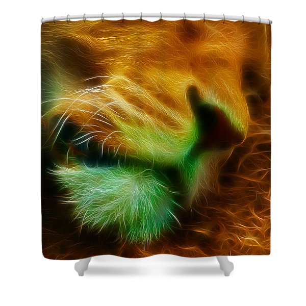 Sleeping Lion 2 Shower Curtain by Chris Thaxter