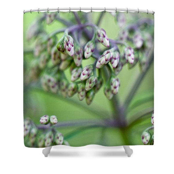 Small World Shower Curtain by Lois Bryan