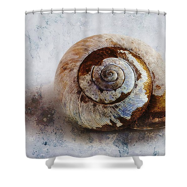 Snail Shell Shower Curtain by Ron Jones