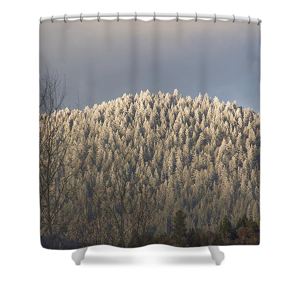 Snowlight Shower Curtain by Mick Anderson