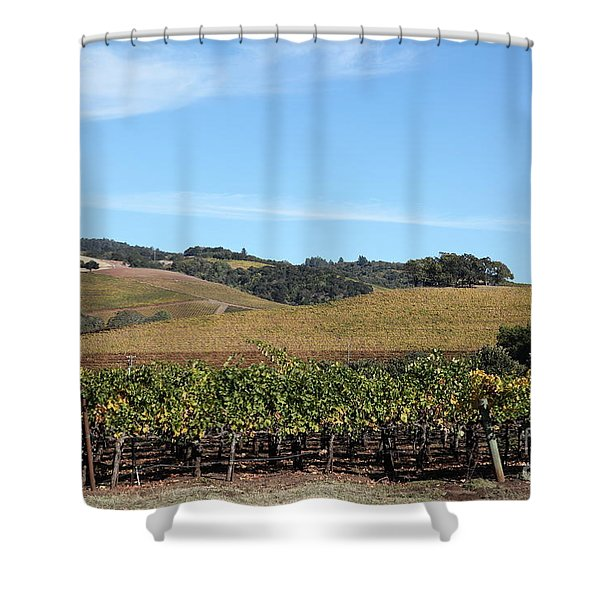 Sonoma Vineyards - Sonoma California - 5D19309 Shower Curtain by Wingsdomain Art and Photography