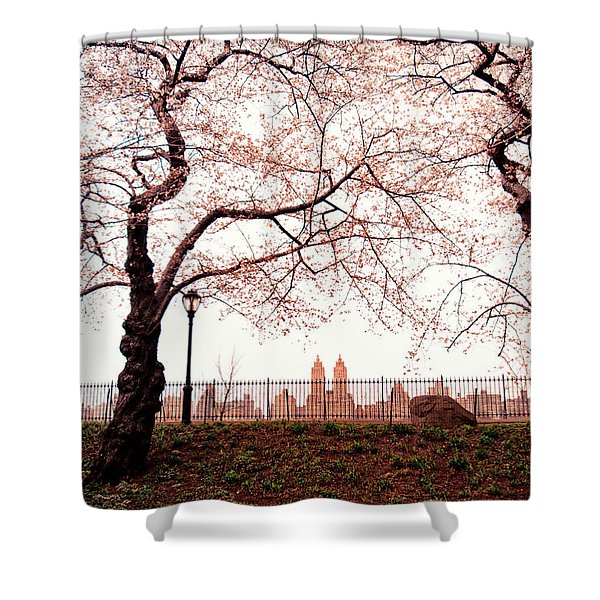 Spring Cherry Blossoms - Central Park Reservoir Shower Curtain by Vivienne Gucwa