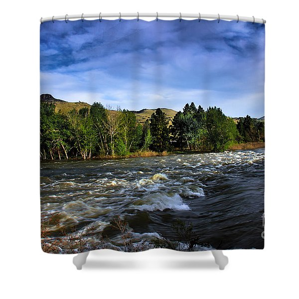 Spring Flow Shower Curtain by Robert Bales