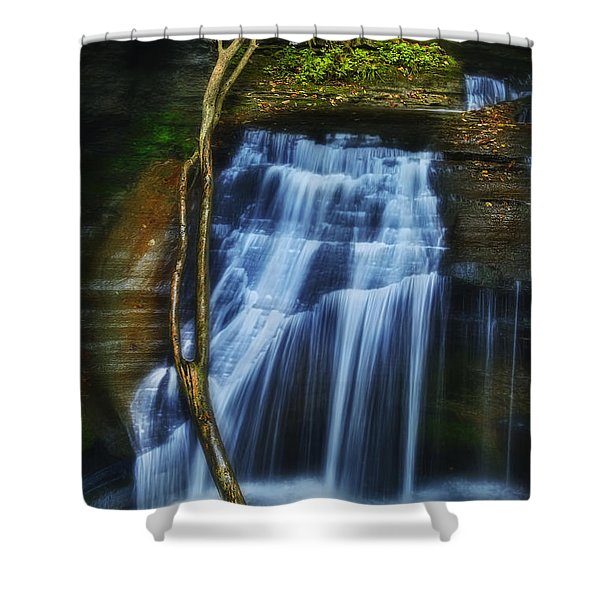 Standing In Motion Shower Curtain by Evelina Kremsdorf