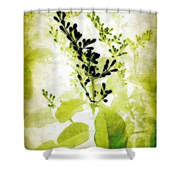 Study in Green Shower Curtain by Judi Bagwell