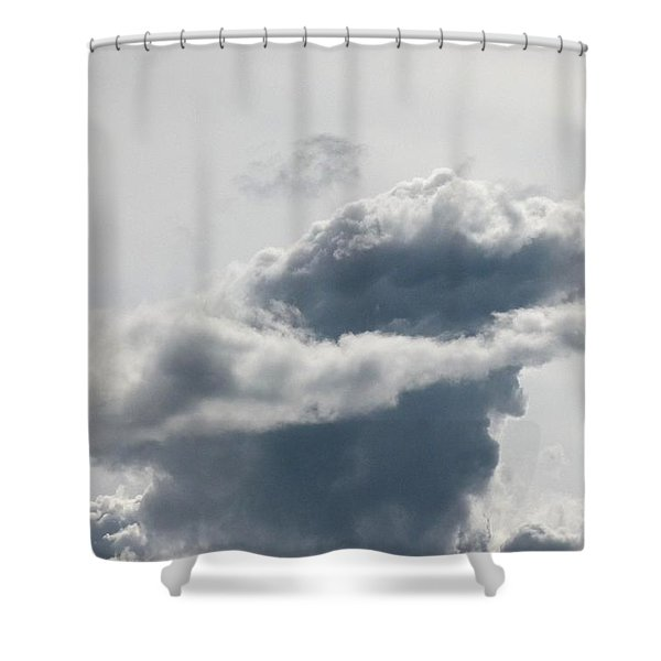 Swashbuckler Shower Curtain by Will Borden