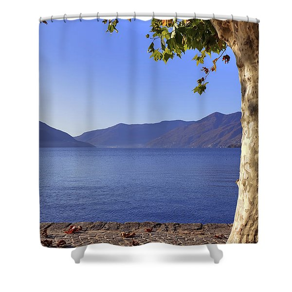 sycamore tree at the Lake Maggiore Shower Curtain by Joana Kruse