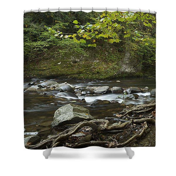Tennessee Stream Panorama 6045 6 Shower Curtain by Michael Peychich