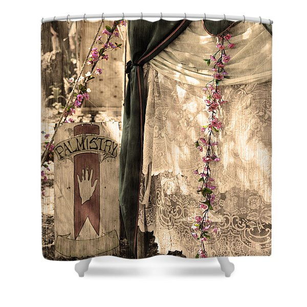 The Fortune Teller Palmistry Shower Curtain by Robin Lewis