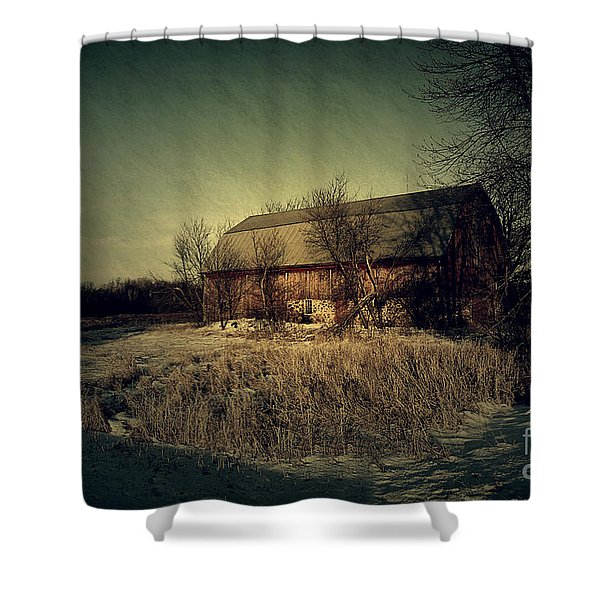 The Hiding Barn Shower Curtain by Joel Witmeyer