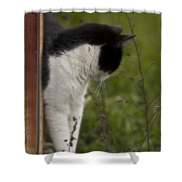 The Hunt Shower Curtain by Kim Henderson