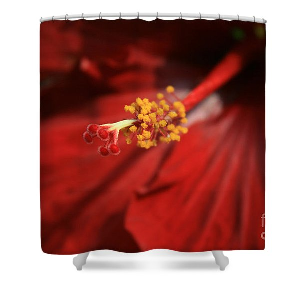 The Intoxication Of Love Shower Curtain by Sharon Mau