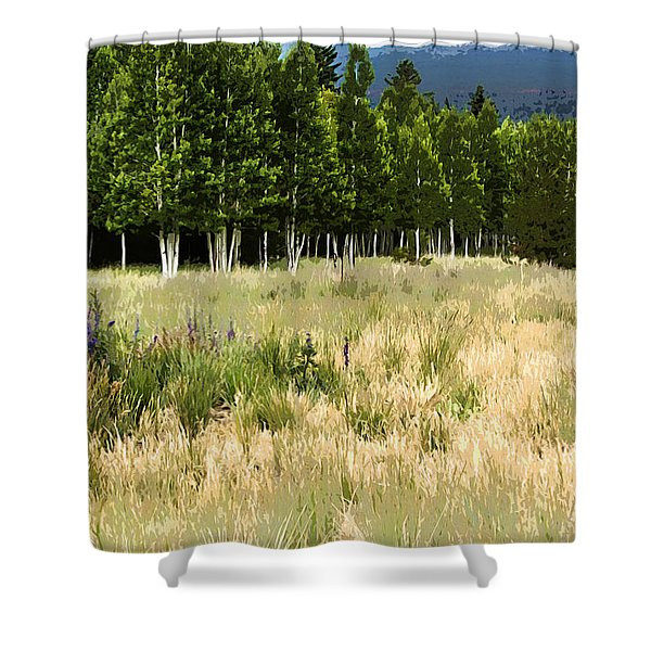 The Meadow Digital Art Shower Curtain by Phyllis Denton
