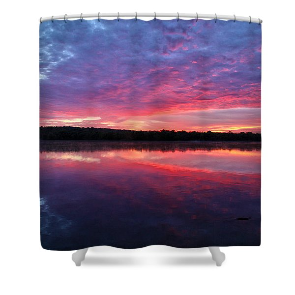The Mystery Shower Curtain by Mitch Cat