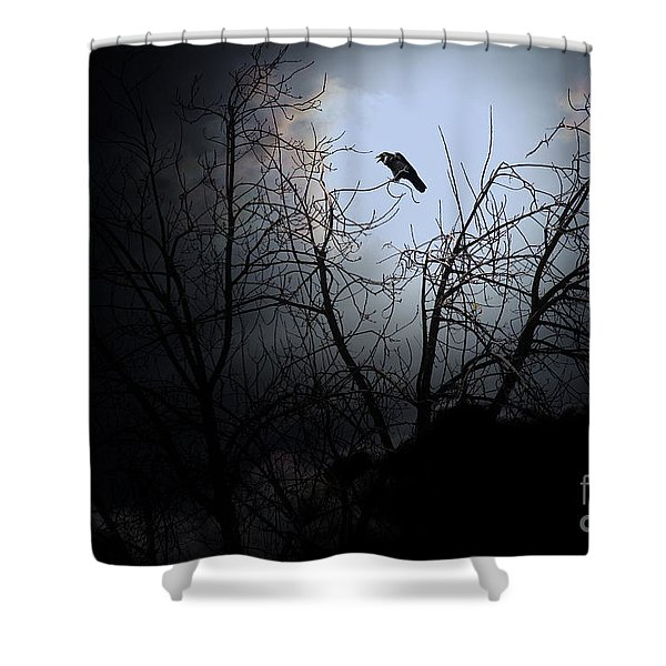 The Night The Raven Appeared In My Dream . 7D12631 Shower Curtain by Wingsdomain Art and Photography