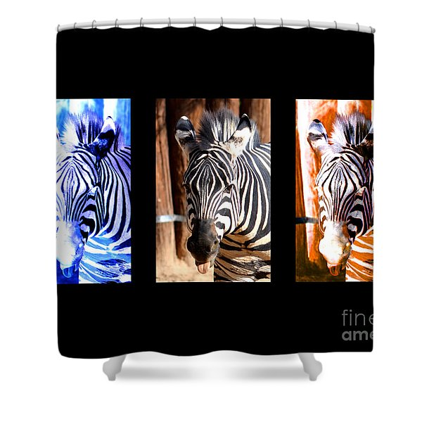 The Three Zebras black borders Shower Curtain by Rebecca Margraf