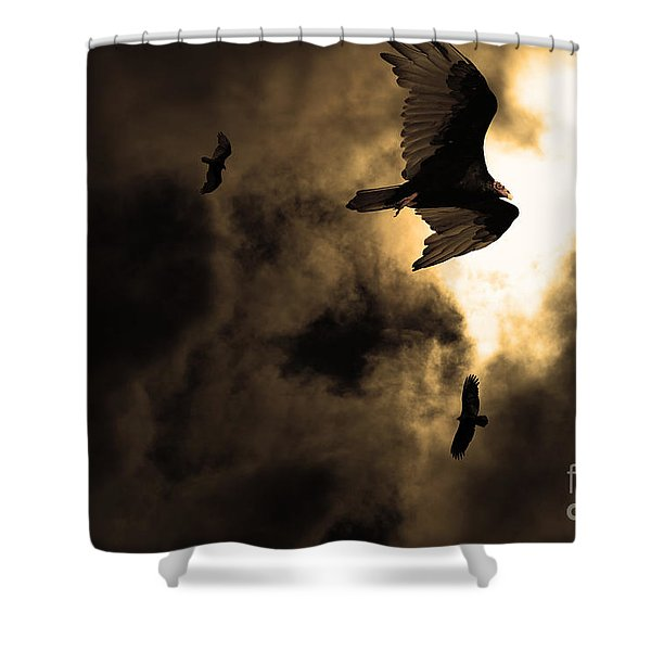 The Vultures Have Gathered In My Dreams . Version 2 . Golden Shower Curtain by Wingsdomain Art and Photography