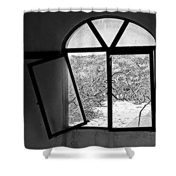 The Window Shower Curtain by Cheryl Young
