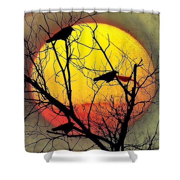 Three Blackbirds Shower Curtain by Bill Cannon