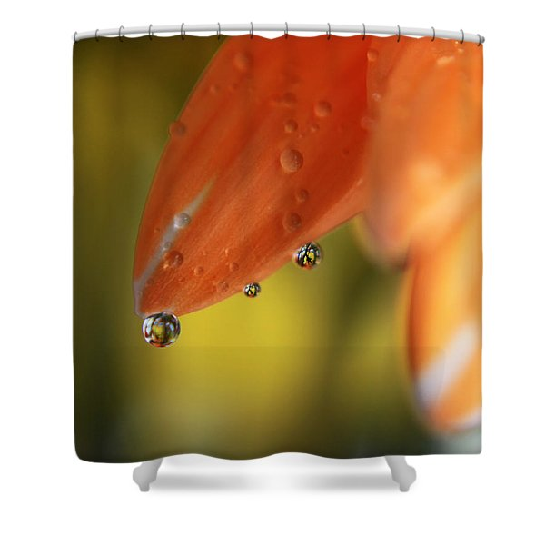 Three Friends Hangin' Out Shower Curtain by Laurie Search
