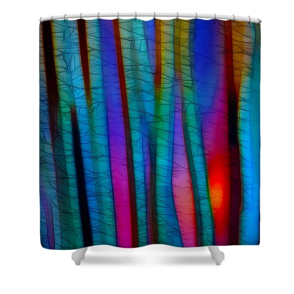 Through The Trees Shower Curtain by Judi Bagwell