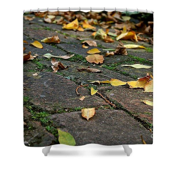 Tree Litter Shower Curtain by Susan Herber