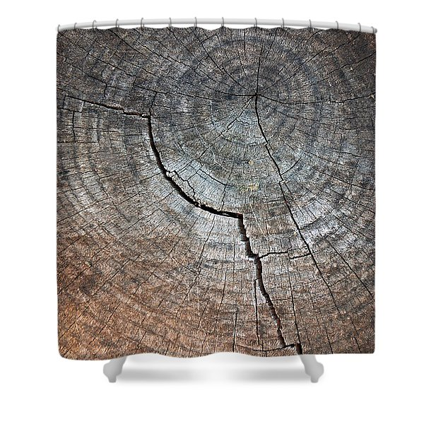 Tree Trunk Shower Curtain by Carlos Caetano
