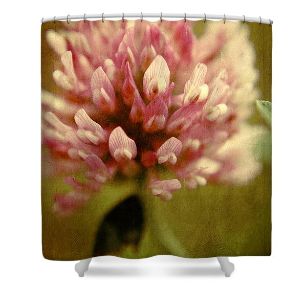 Trefle en Solo Shower Curtain by Variance Collections