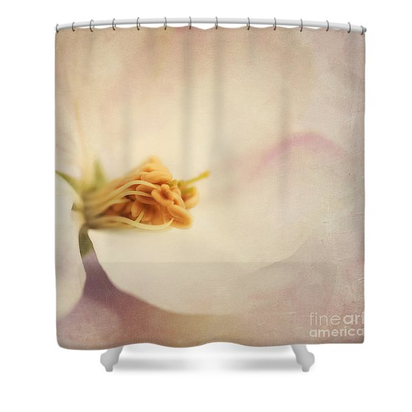 Tresfonds Heart Of A White Blossom Shower Curtain by Priska Wettstein