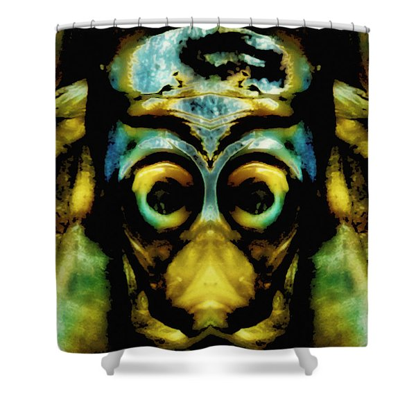 Tribal Mask Shower Curtain by Skip Nall