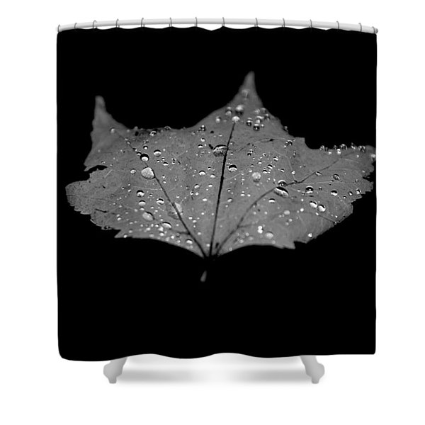 Turn Over A New Leaf Shower Curtain by Betsy C  Knapp
